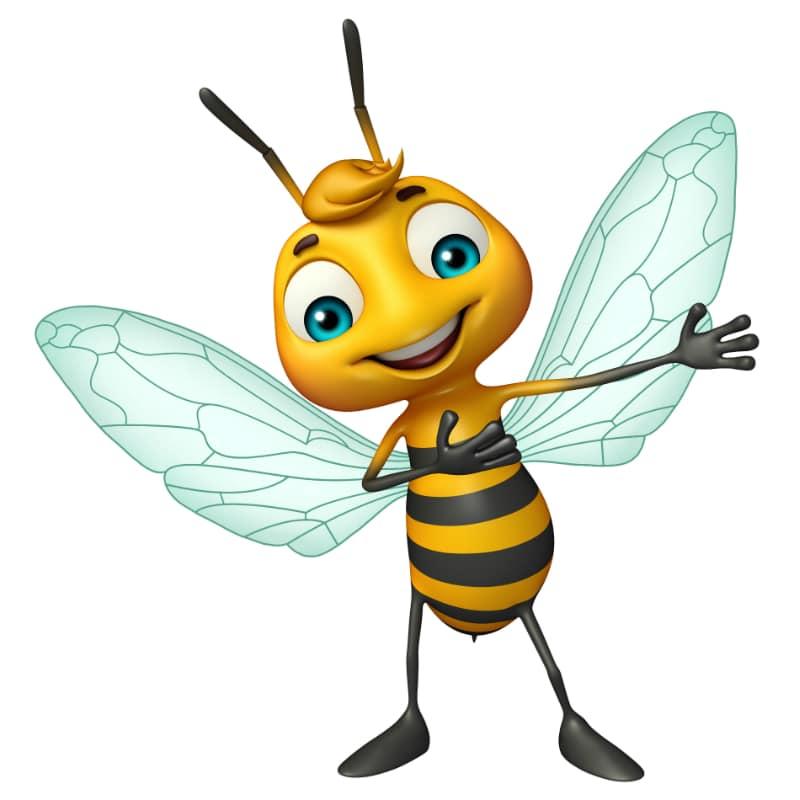Bienen-Newsletter 2