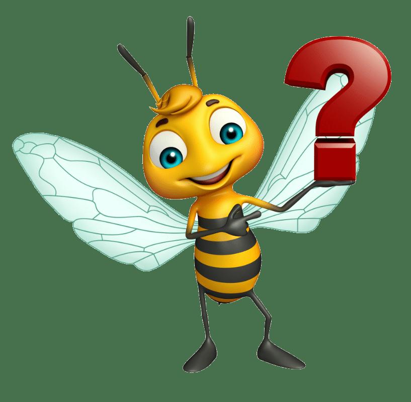 VOLhighspeed Bienenquiz
