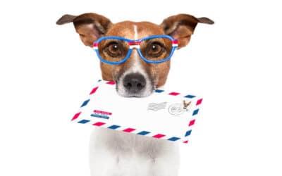 E-Mail – 5 Fakten die ihr noch nicht kennt