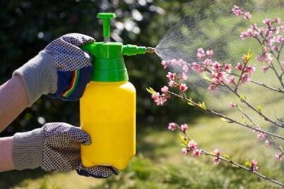VOLhighspeed Blogbeitrag Pestizide Insektizide
