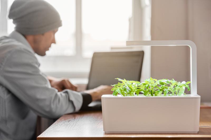 Smart Gardening_VOLhighspeed_Blog