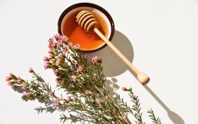 Manuka-Honig aus Neuseeland – ein Wundermittel?